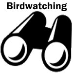 science kit logo - birdwatching